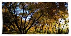 Bosque Color Beach Sheet