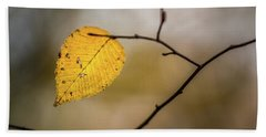 Beach Towel featuring the photograph Bright Fall Leaf 10 by Michael Arend