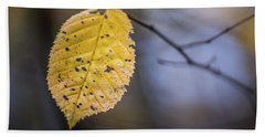 Beach Towel featuring the photograph Bright Fall Leaf 5 by Michael Arend