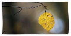 Beach Towel featuring the photograph Bright Fall Leaf 6 by Michael Arend