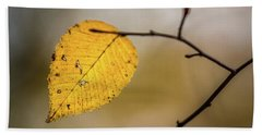 Beach Towel featuring the photograph Bright Fall Leaf 8 by Michael Arend