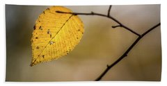 Beach Towel featuring the photograph Bright Fall Leaf 9 by Michael Arend