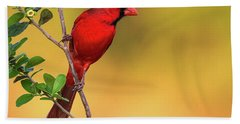 Bright Red Cardinal Beach Towel