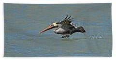 Brown Pelican Gliding Beach Towel