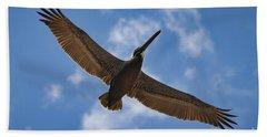 Brown Pelican In Flight Beach Towel
