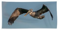 Brown Pelican In Flight Beach Sheet