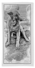 Bruce Digital Pencil Drawing Beach Towel