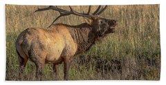 Bugling Bull Elk 7777 Beach Sheet