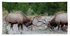 Beach Towel featuring the photograph Bull Elk Battle Rocky Mountain National Park by Nathan Bush