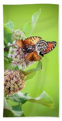 Butterfly Buffet II Beach Towel
