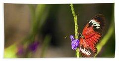 Butterfly Landing On Purple Flower Beach Sheet