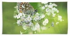 Butterfly On Babybreath Beach Sheet