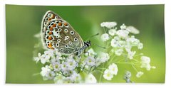Butterfly On Babybreath Beach Towel