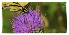 Butterfly On Bull Thistle Beach Towel