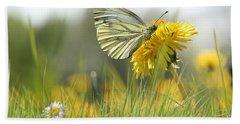 Butterfly On Dandelion Beach Sheet