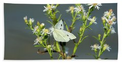 Cabbage White Butterfly On Flowers Beach Sheet
