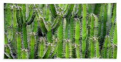 Beach Towel featuring the photograph Cacti Wall by Top Wallpapers