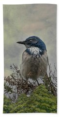 Beach Towel featuring the photograph California Scrub Jay - Vertical by Patti Deters