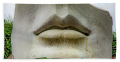 Beach Towel featuring the photograph Can You Hear Me by Lora J Wilson