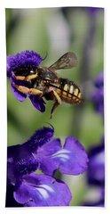 Carder Bee On Salvia Beach Towel
