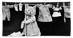 Cat Hanging Laundry On Clothesline - Harry Whittier Frees Beach Towel