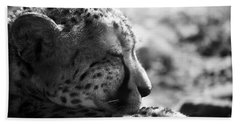 Beach Towel featuring the photograph Catnap by Whitney Goodey
