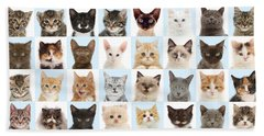 Beach Towel featuring the photograph Cats Or Chess by Warren Photographic