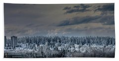 Beach Towel featuring the photograph Central Park Winter by Juan Contreras