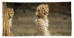 Cheetah Cubs And Rain 0168 Beach Sheet