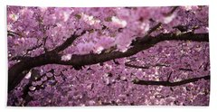 Cherry Blossom Tree Panorama Beach Towel