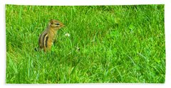 Chipmunk And The Flower Beach Towel