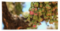 Beach Towel featuring the photograph Cholla Cactus Blooms by Dawn Richards