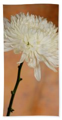 Chrysanthemum On Canvas Beach Sheet