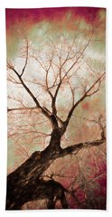 Beach Towel featuring the photograph Climbing Red Fiery by James BO Insogna