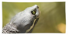 Close Up Of A Turtle. Beach Towel