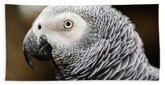 Close Up Of An African Grey Parrot Beach Towel