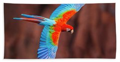 Close Up Of Flying Red-and-green Macaw Beach Towel