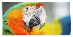 Close Up Of The Macaw Bird. Beach Towel