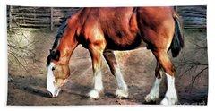 Clydeddale Horse  Digital Painting Beach Sheet