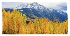 Colorado Aspens And Mountains 2 Beach Towel