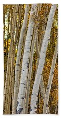 Colorado Aspens Beach Towel