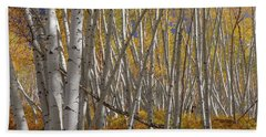 Beach Towel featuring the photograph Colorful Stick Forest by James BO Insogna