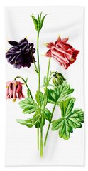 Columbine Flower Beach Towel