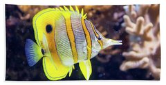 Copperband Butterfly Fish Beach Towel