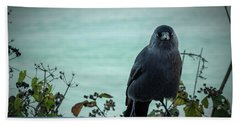 Cornish Crow Beach Towel