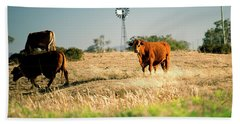 Beach Towel featuring the photograph Cows And A Windmill In The Countryside. by Rob D Imagery