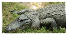 Beach Towel featuring the photograph Crocodile Outside by Rob D Imagery