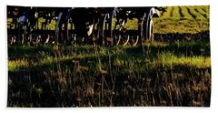 Beach Towel featuring the photograph Cultivator At Sunrise by Jerry Sodorff