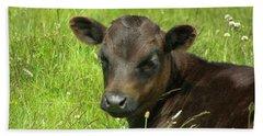Cute Cow Beach Sheet