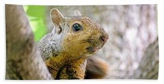 Cute Funny Head Squirrel Beach Towel